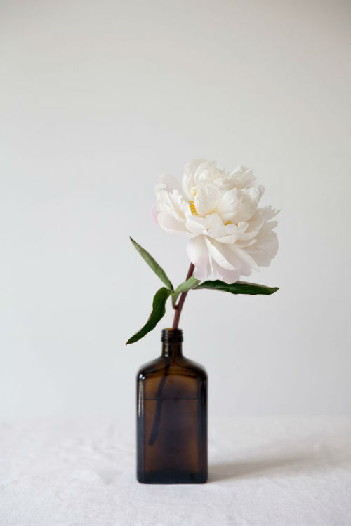 Stop and smell thepeonies