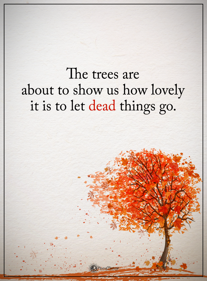 dead_things_leafquote